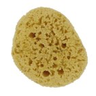 forsters_natural_sea_sponge_
